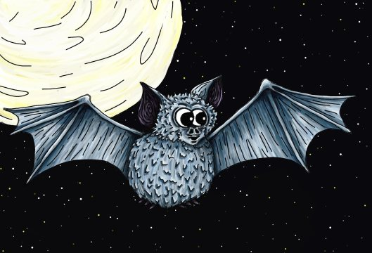 Bat flew into the light of the moon sky