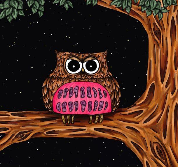 Ollie is an owl sky